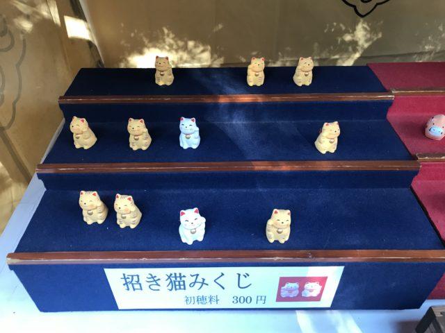 川越氷川神社 招き猫みくじ